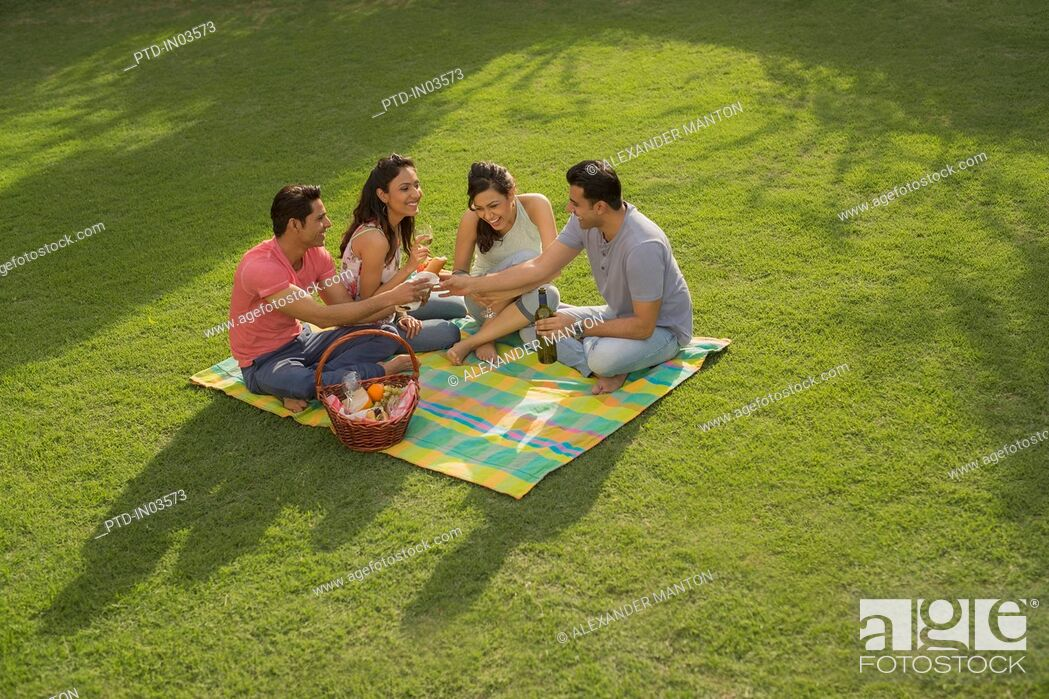 Stock Photo: Four friends having picnic.