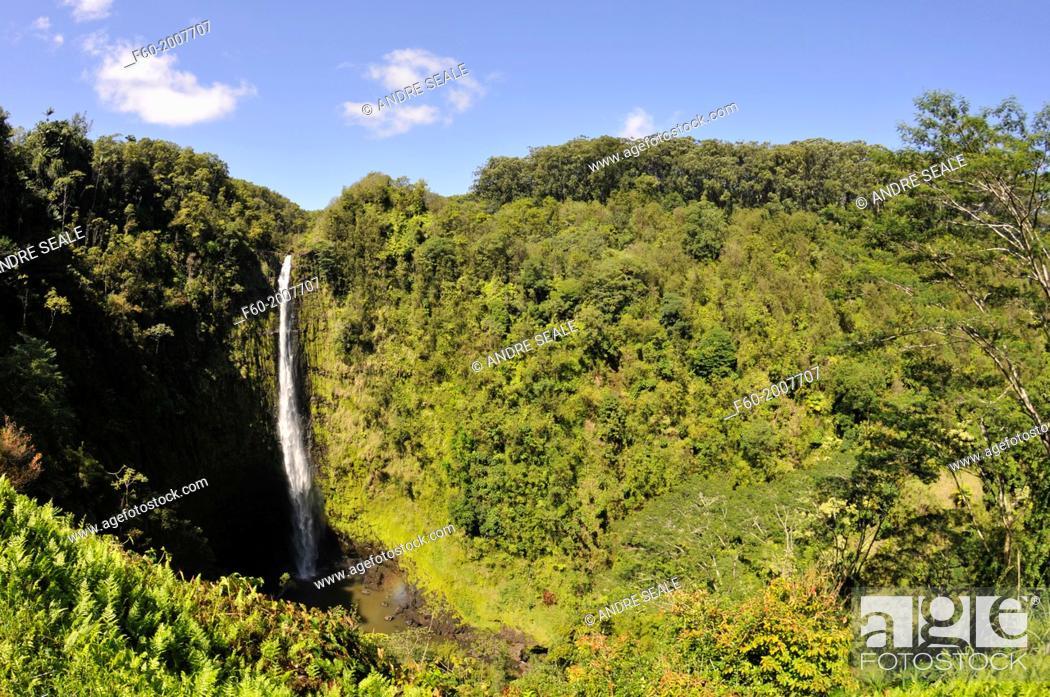 Stock Photo: Akaka Falls in the Akaka Falls State Park, Big Island, Hawaii, USA.