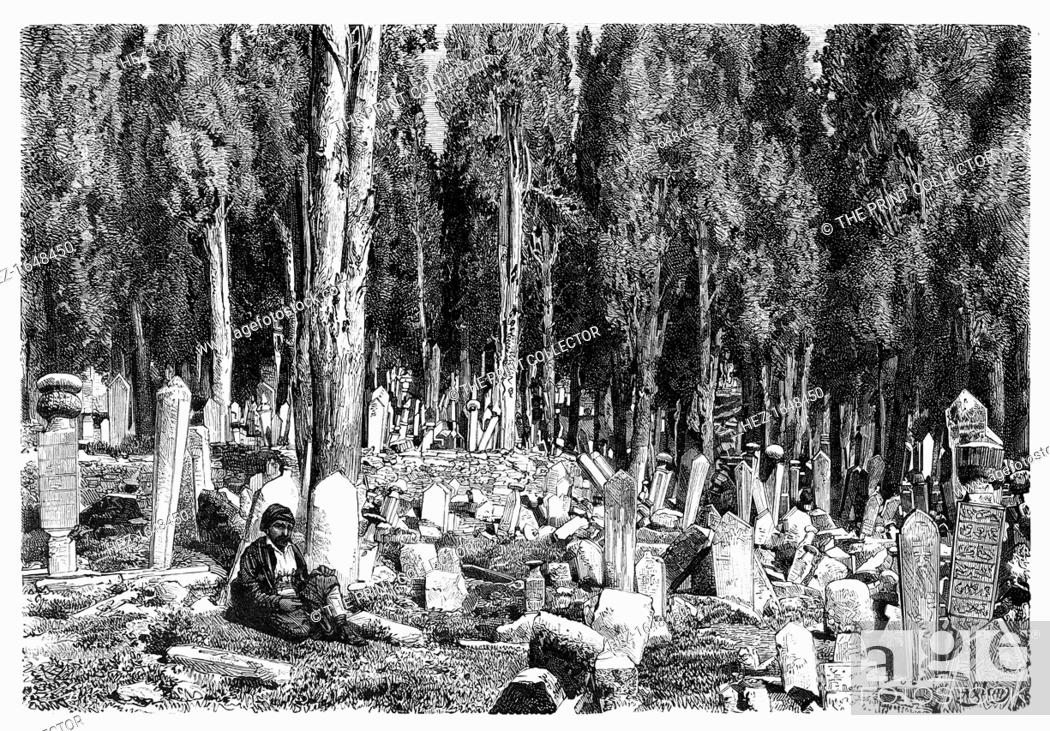 Stock Photo: Cypress trees in the cemetery of Scutari, Turkey, 1895. From The Universal Geography with Illustrations and Maps, division XVII.
