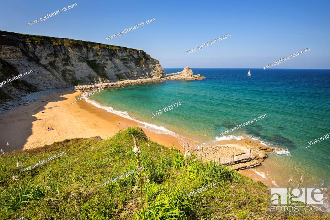 Stock Photo: Meadow of green grass and flowers. Langre beach, Ribamontan al Mar, Trasmiera coast. Cantabrian Sea. Cantabria Spain. Europe.