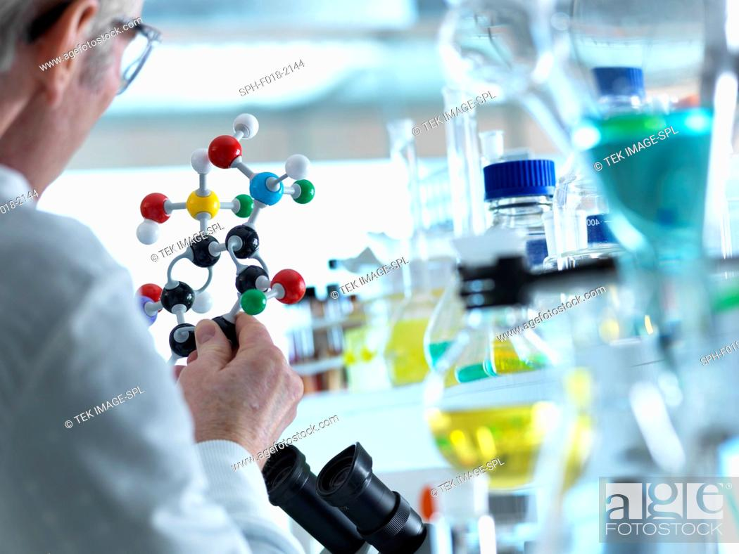 Stock Photo: MODEL RELEASED. Scientist understanding a chemical experiment using a molecular model.