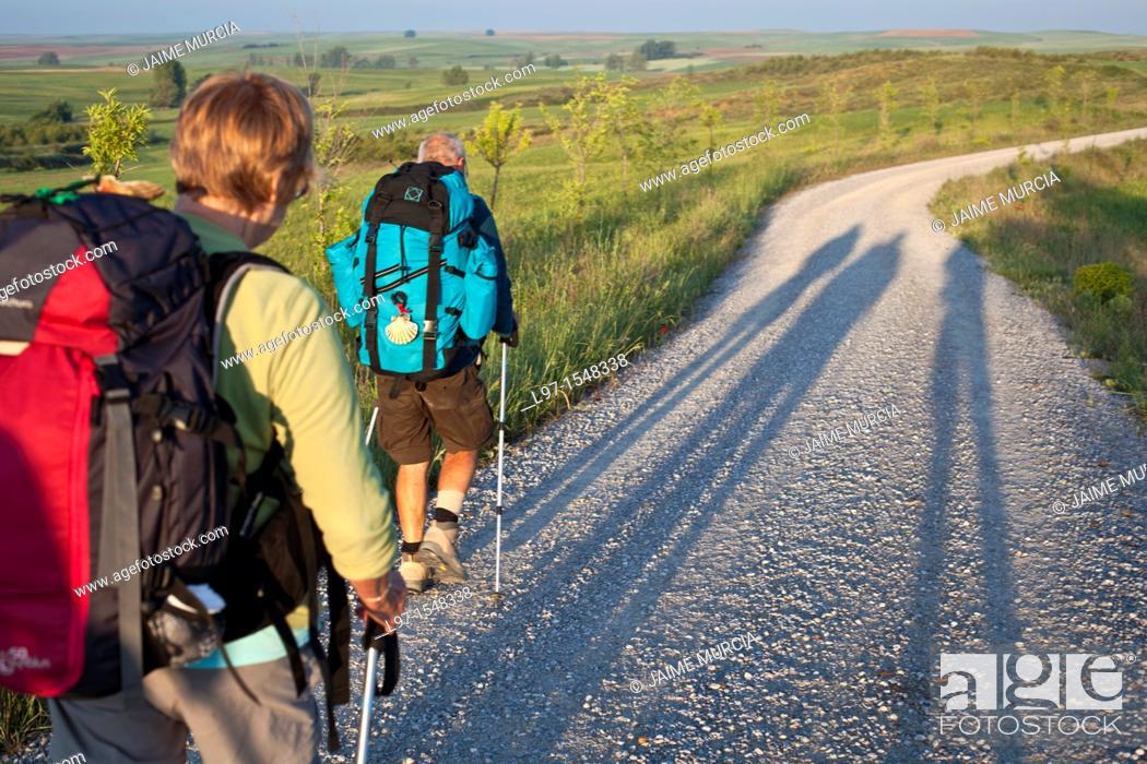 Stock Photo: Long shadows of pilgrims walking the Camino de Santiago.