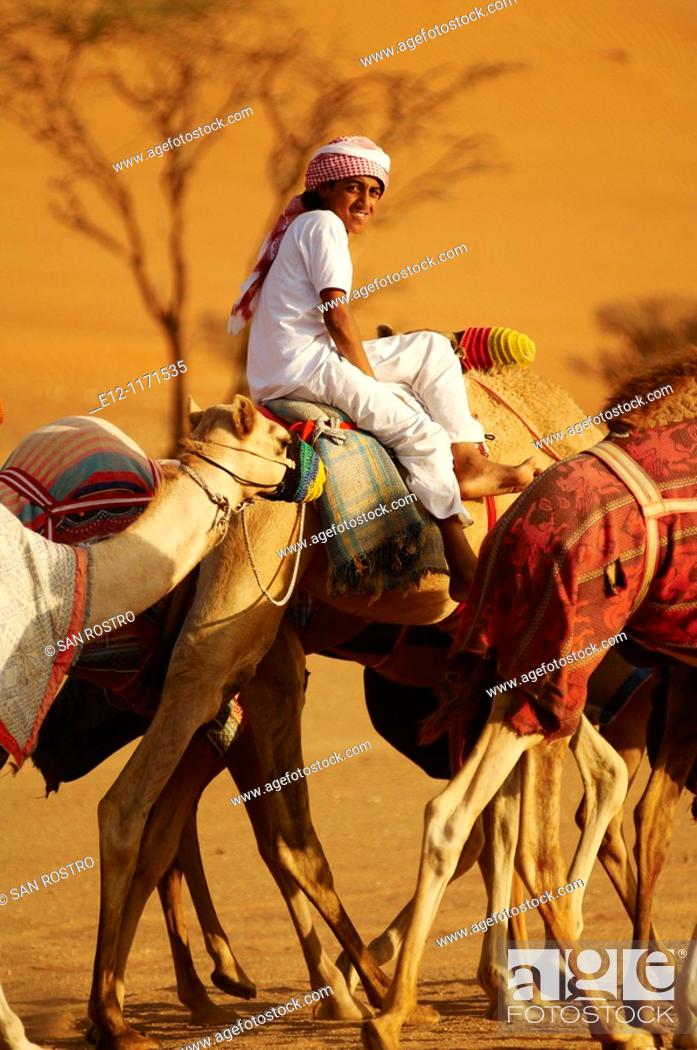 Stock Photo: Middle East, Oman, desert of Wahiba, kids training race camels bedouins.