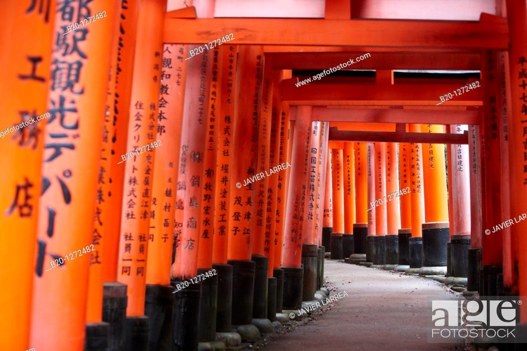 Stock Photo: Toriis, Fushimi Inari Shrine, Kyoto, Japan.