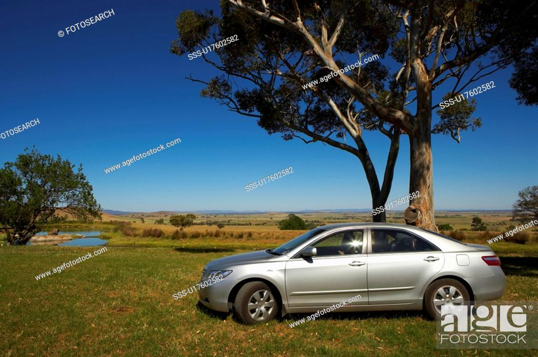 Stock Photo: Car stop at tree side.