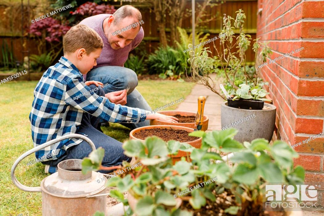 Stock Photo: Father and son planting and sowing seeds together.