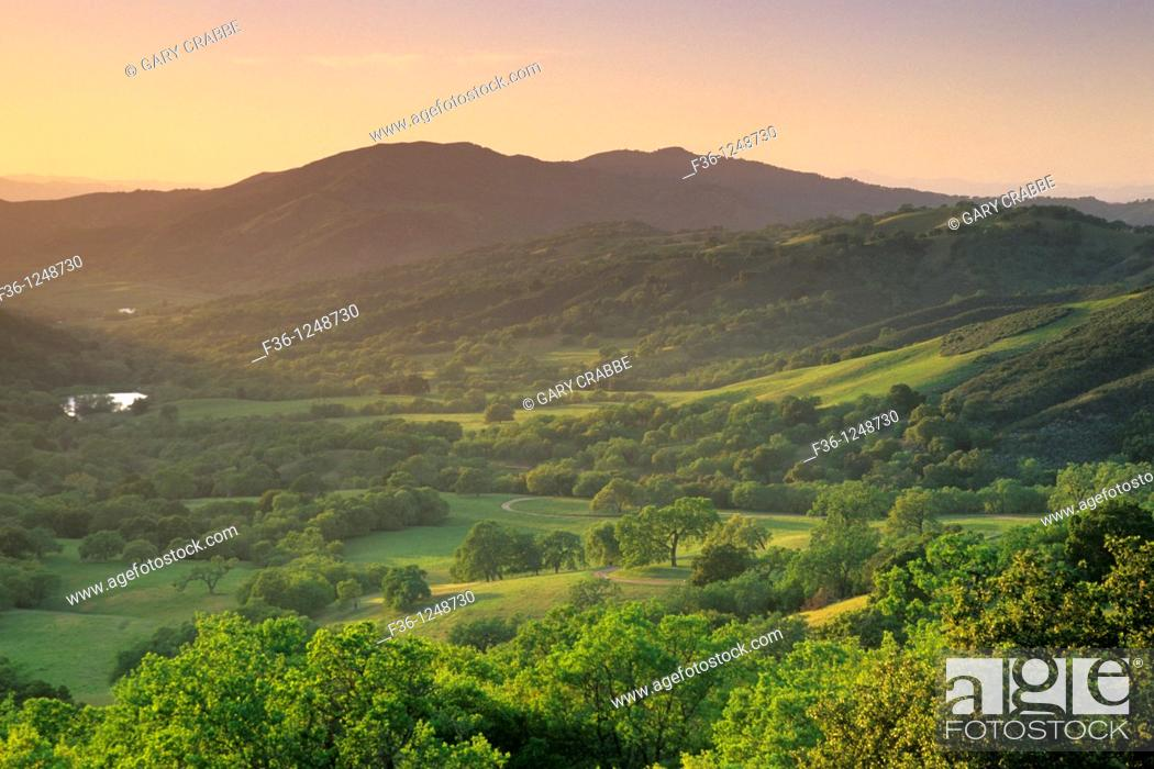 Stock Photo: Sunset over oak trees and valley in spring, along Adelaida Road, Paso Robles, San Luis Obispo County, California.
