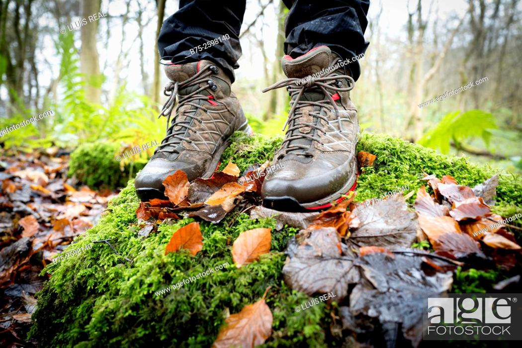 Stock Photo: Close-up of feet with a walking boots in a forest, over a wall with moss on a rainy day. Grassington, Skipton, Yorkshiredales, Yorkshire, England, UK, Europe.