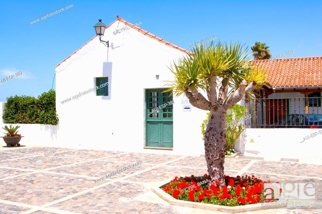 Stock Photo: Spain - Canary Islands - Gran Canaria - Central Region - Telde - Barrio de San Francisco.