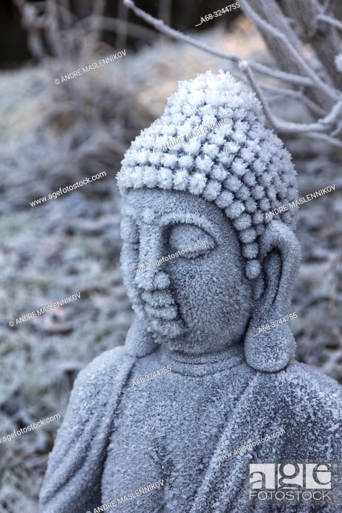 Stock Photo: Sitting Buddha in frost.