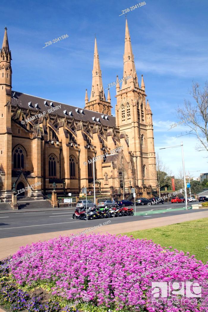 Stock Photo: saint marys cathedral on college street, sydney city centre, australia.