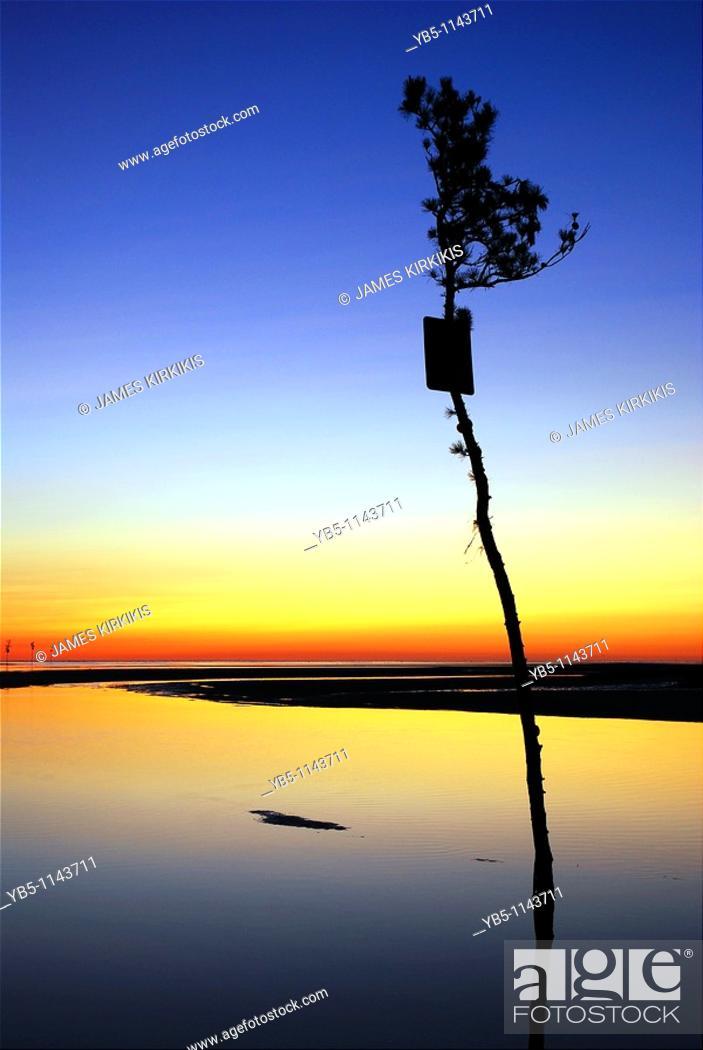 Stock Photo: Rock Harbor Creek, Cape Cod, MA.