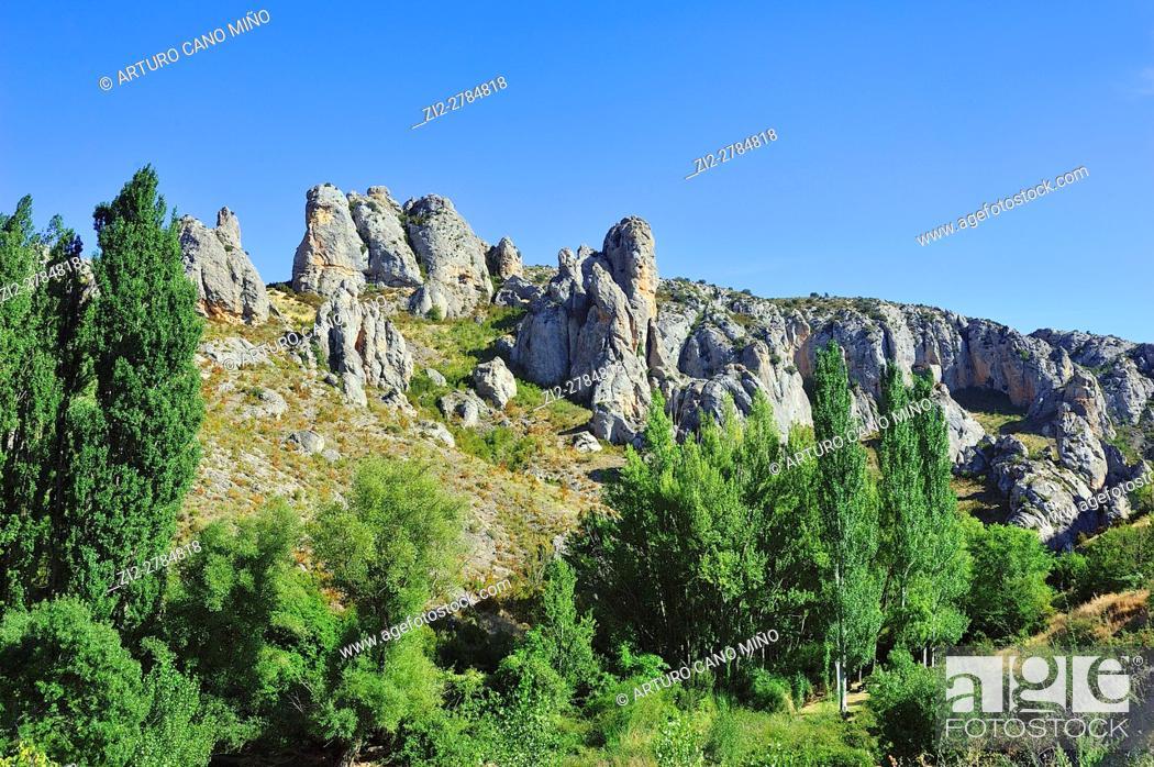 Imagen: The Ojosa ravine. Calcena, Saragossa province, Spain.