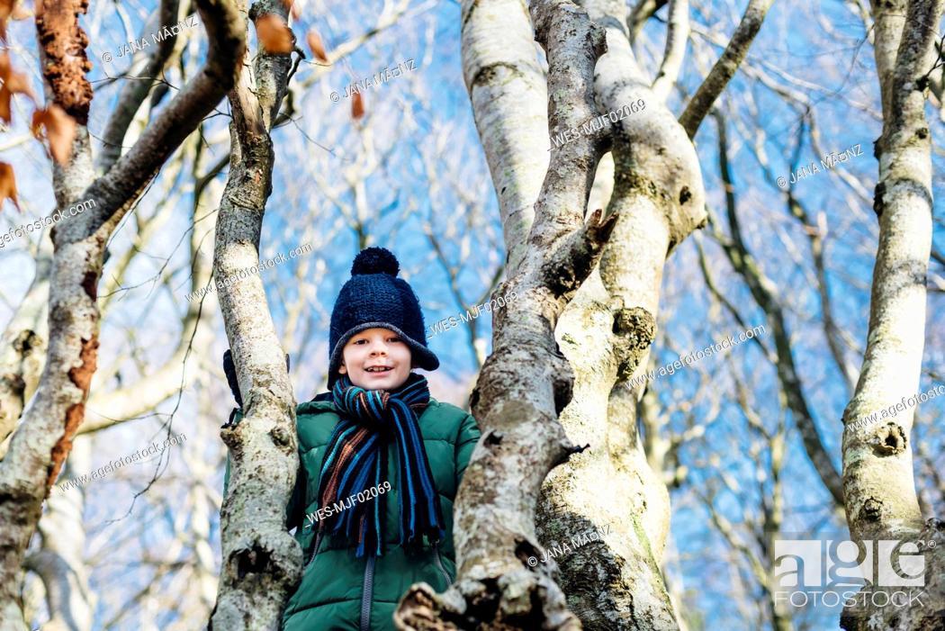 Photo de stock: Boy climbing on a tree in winter clothes.