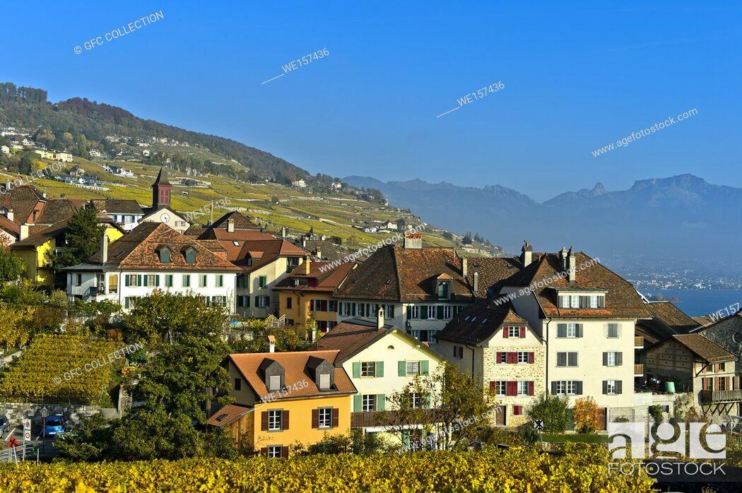 Photo de stock: Winegrowing village of Rivaz in the Lavaux vineyards, Vaud, Switzerland.