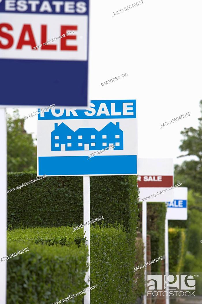 Stock Photo: Real estate for sale signs in a row by hedges.