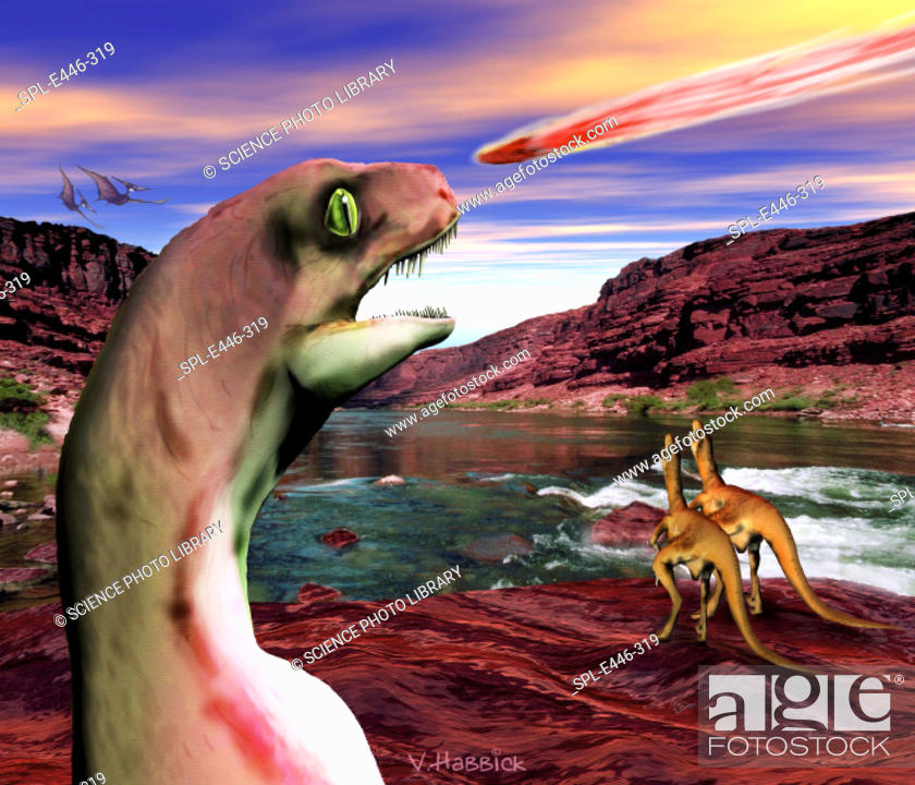 Stock Photo: Death of the dinosaurs. Computer illustration of Velociraptor sp. dinosaurs watching an asteroid or comet core as it rushes towards the Earth.
