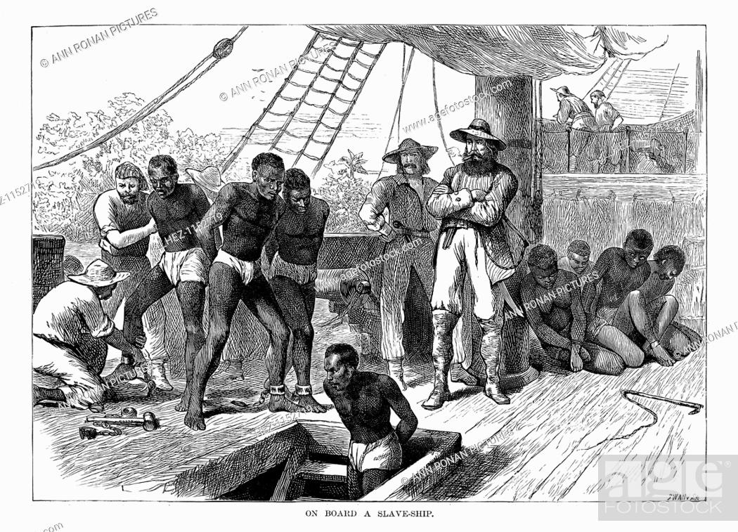 a discussion of slave trade and plantation development in america The economic basis of the slave trade  local plantation owners as well as slave traders  there was a development even more important than the growth of sugar.