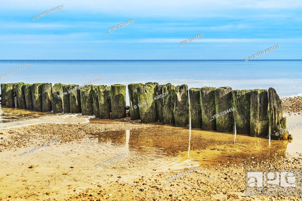 Imagen: Old Groynes at the beach of the Baltic Sea near Kolobrzeg. Groynes are intended to break the shaft and to prevent the erosion of the coast.