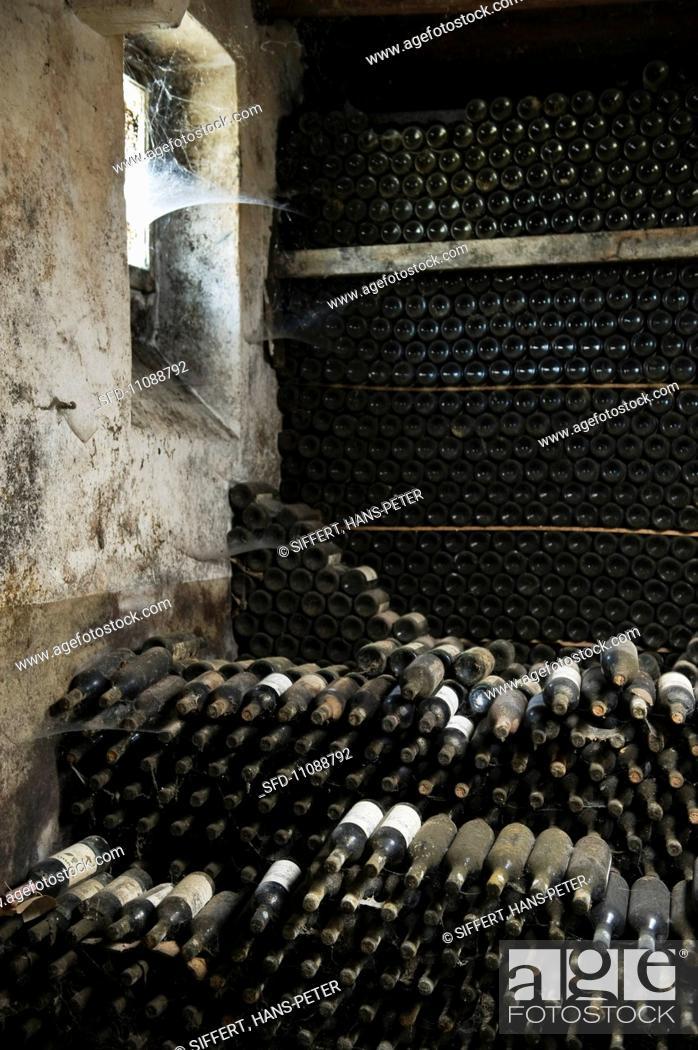 Stock Photo: Bottles maturing in the cellar of Fattoria Selvapiana.