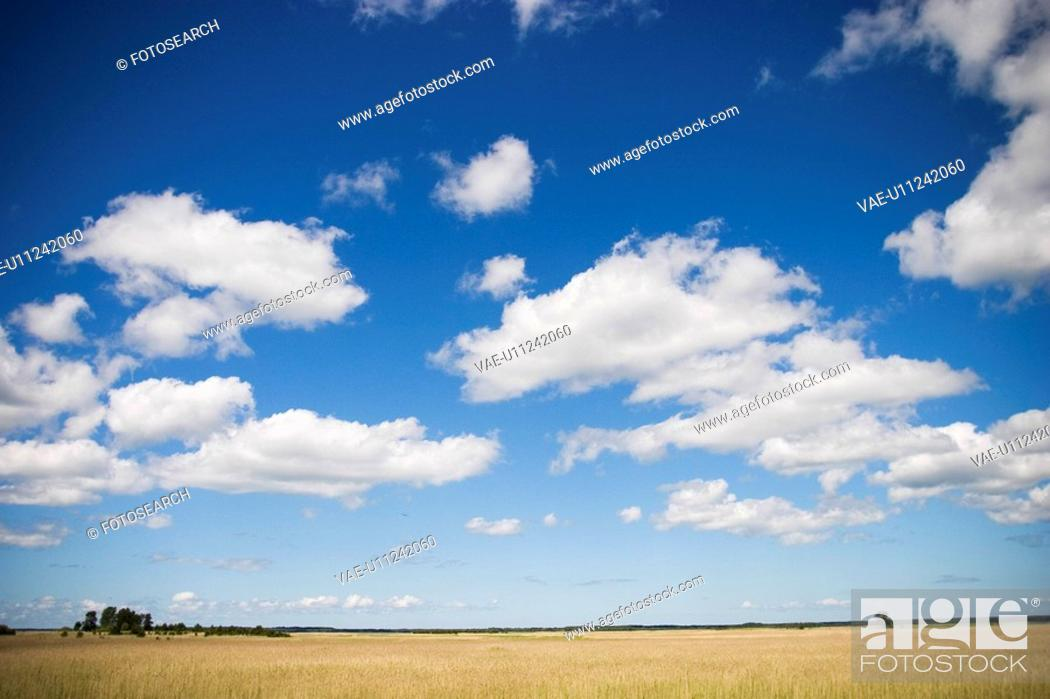 Stock Photo: Calm, Clouds, Cloudy, Day, Field.