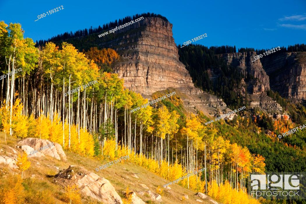 Stock Photo: Fall color in the Rocky Mountains.