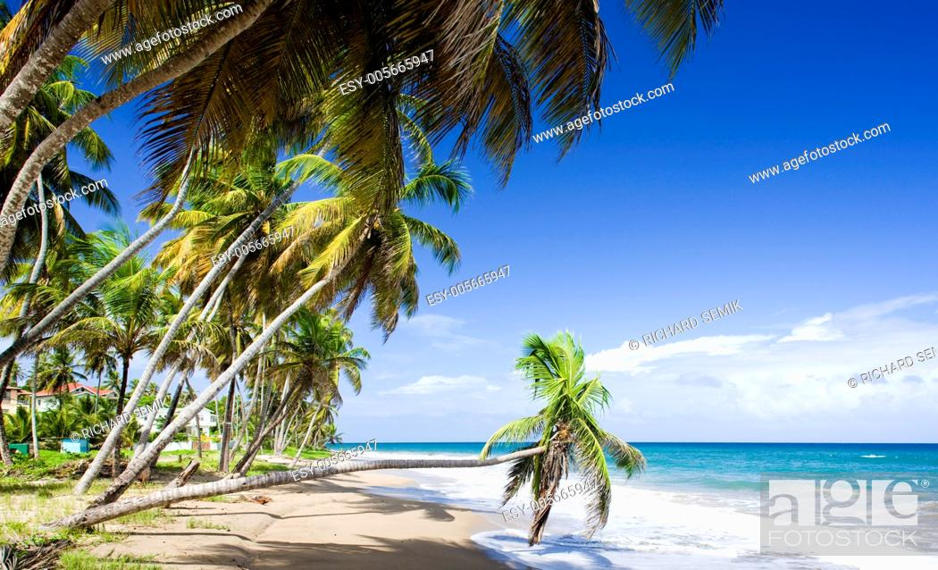 Stock Photo: Sauteurs Bay, Grenada.