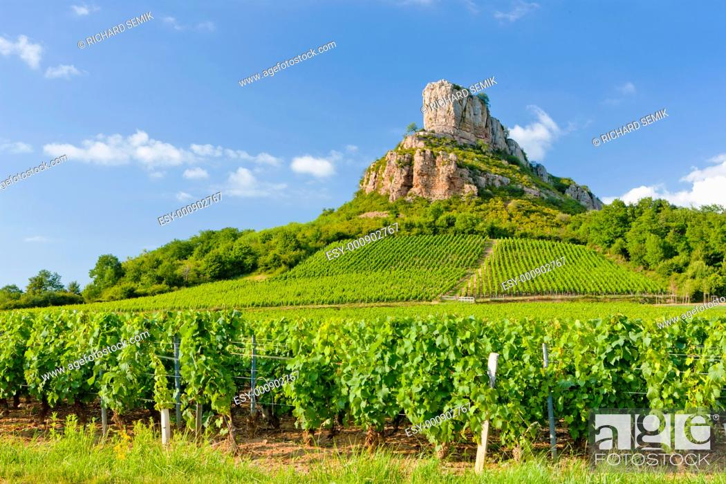 Stock Photo: Solutre Rock with vineyards, Burgundy, France.