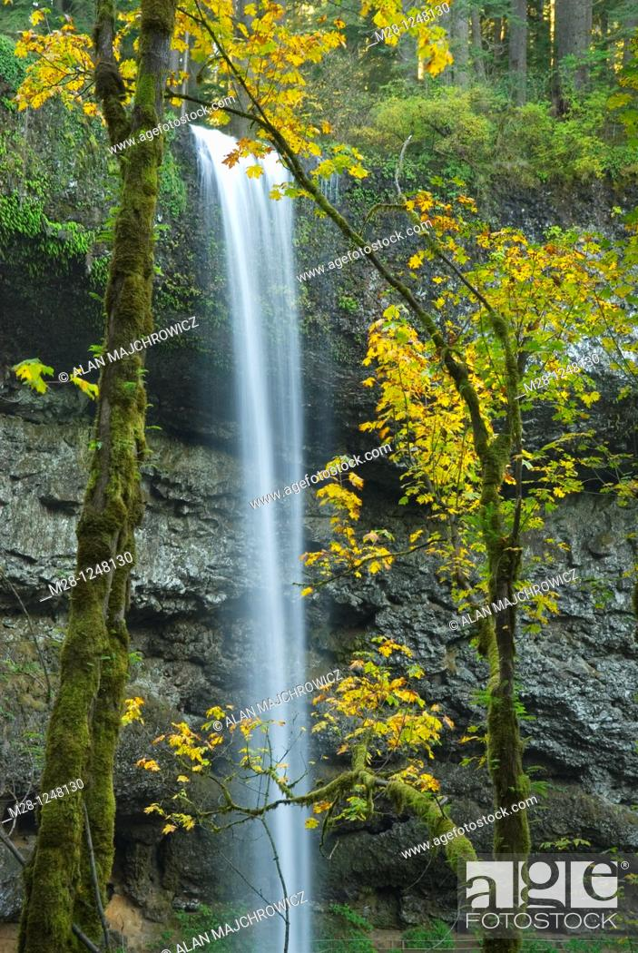 Stock Photo: South Falls, Silver Falls State Park Oregon.