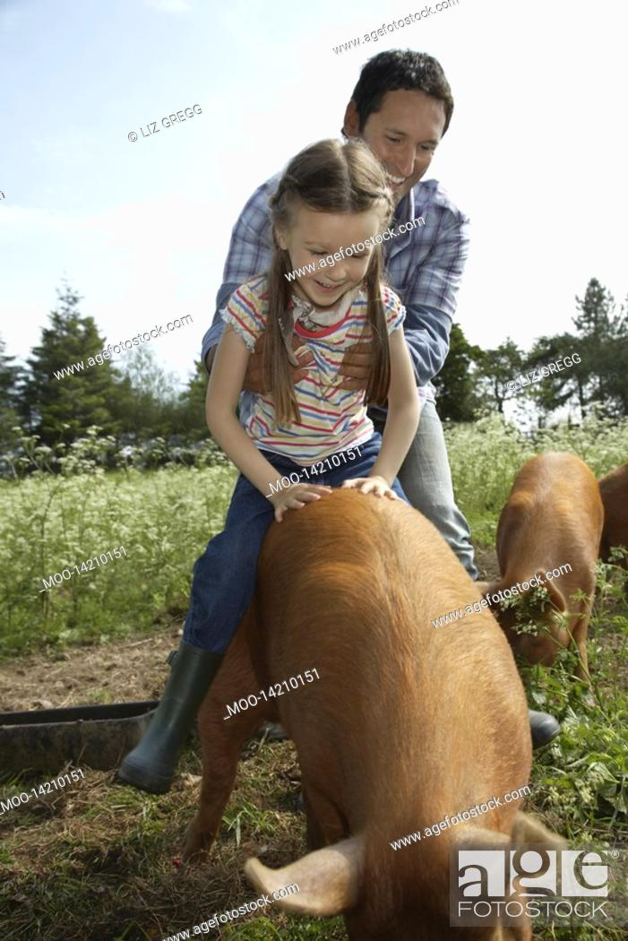 Stock Photo: Father helping daughter 5-6 to ride pig in sty.