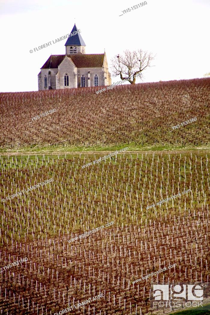 Stock Photo: Church of the french village of Prehy, lost in the vineyards and famous for its wine of Chablis, nice view and cliché of Burgundy.