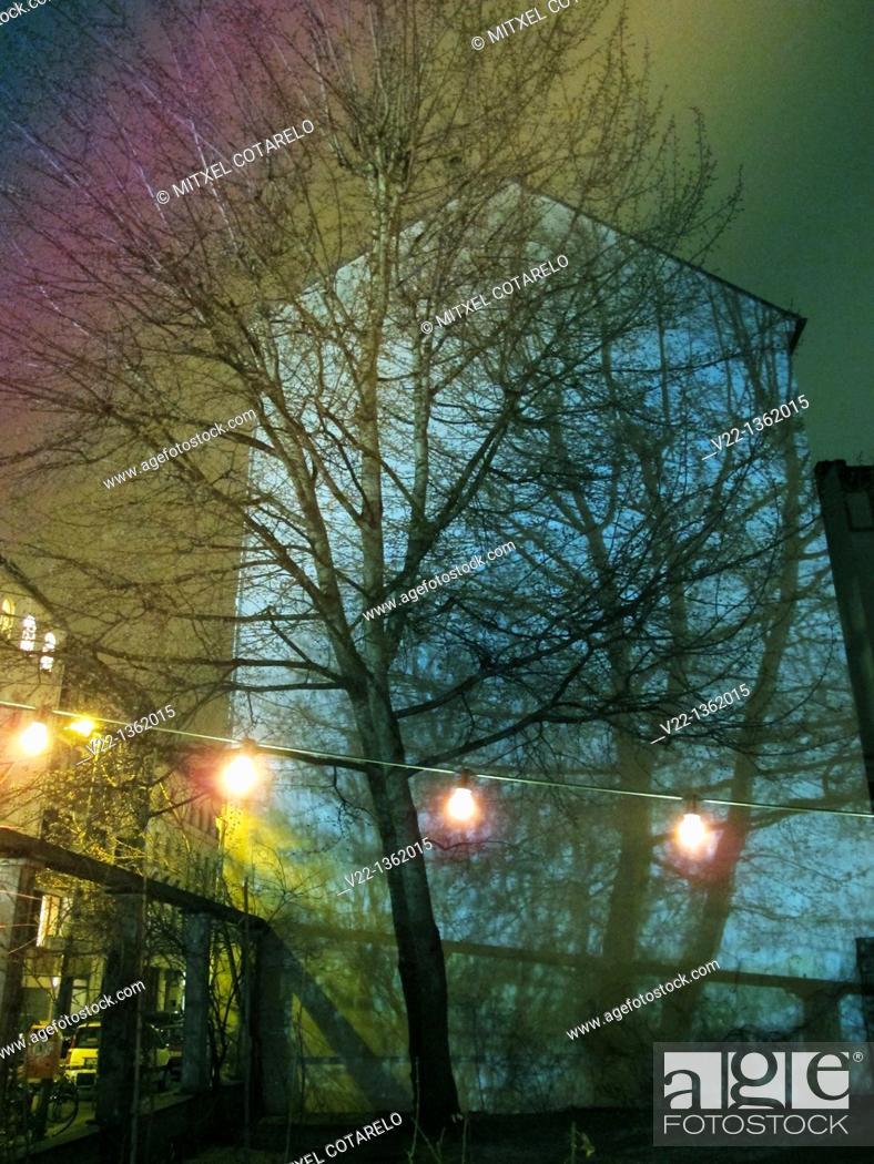 Stock Photo: TREE REFLECTION.