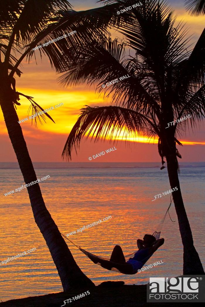 Stock Photo: Woman in hammock, and palm trees at sunset, Coral Coast, Viti Levu, Fiji, South Pacific.