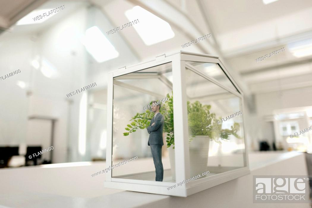 Stock Photo: Businessman figurine standing in glasshouse with plant.