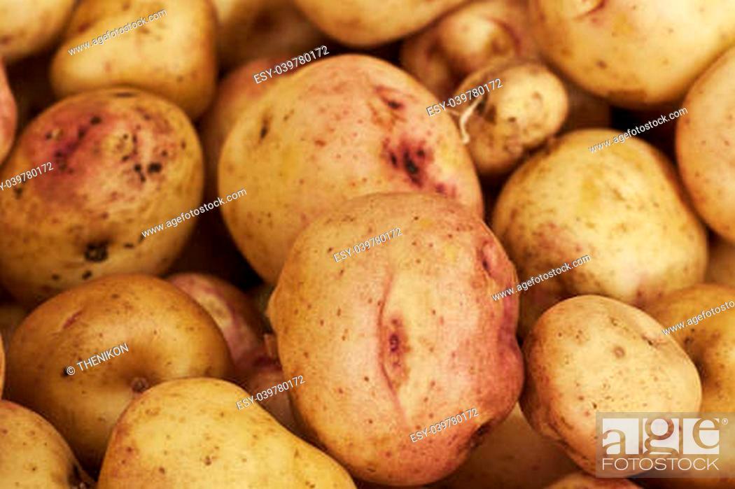 Stock Photo: Healthy Food.