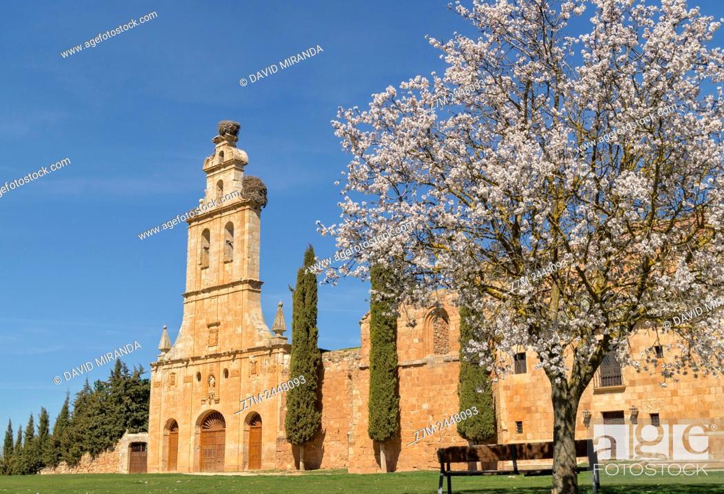 Stock Photo: Antiguo convento de San Francisco, Ayllón. Conjunto histórico artístico. Segovia province. Castile-Leon. Spain.