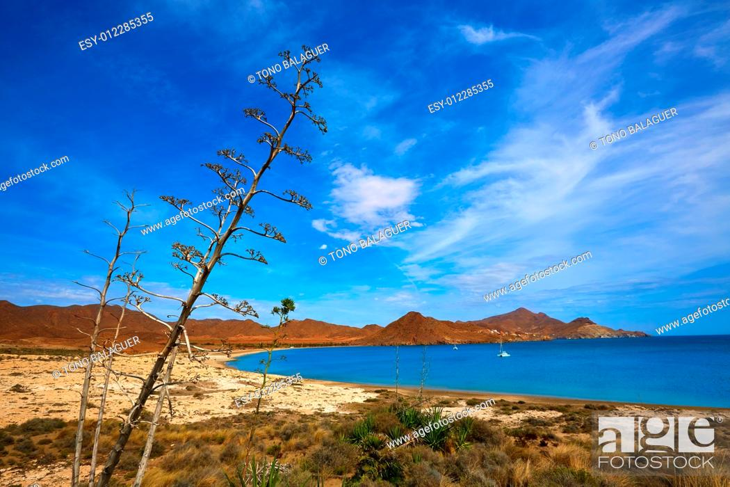 Almeria Playa De Los Genoveses Beach In Cabo De Gata Spain Stock Photo Picture And Low Budget Royalty Free Image Pic Esy 012285355 Agefotostock