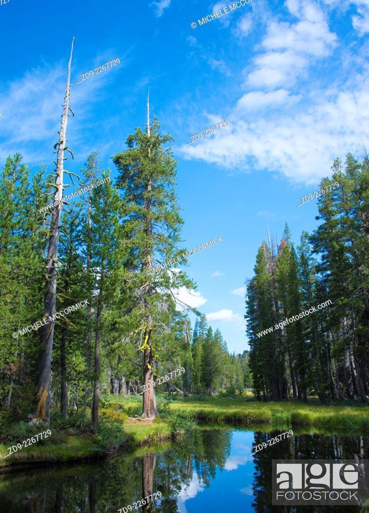 Stock Photo: A beautiful mountain scene in the high Sierra.