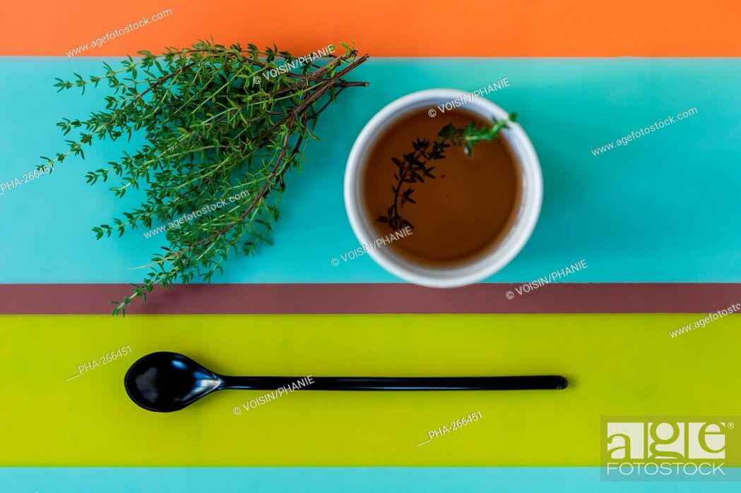 Stock Photo: Herbal tea of thyme.