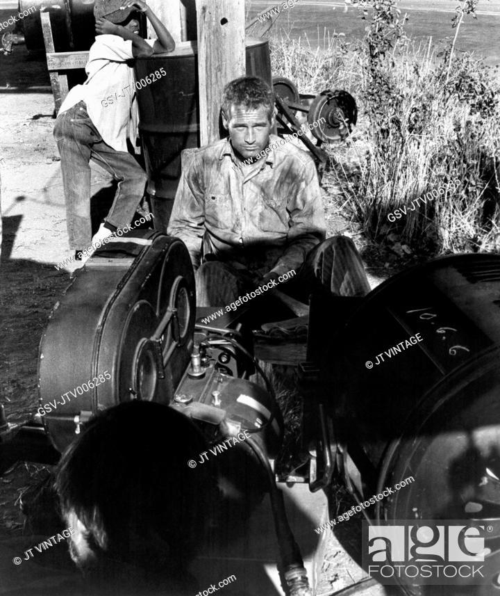 6d109213 Paul Newman, on-set of the Film Cool Hand Luke, 1967, Stock Photo ...