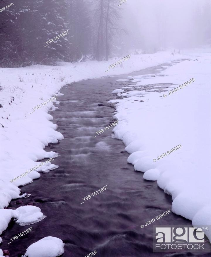 Stock Photo: Winter snow and fog along creek, Wallowa Lake State Park, northeast Oregon, USA.