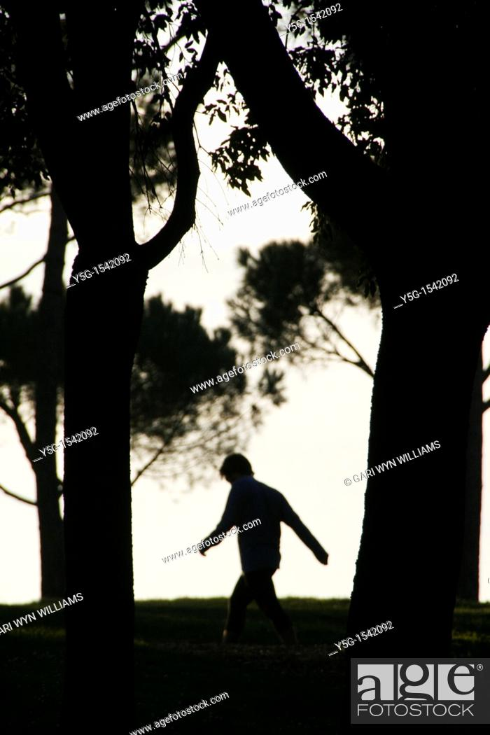 Stock Photo: silhouette of person walking through woods in evening.