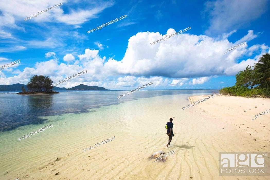 Stock Photo: Boy dragging caught squid, L'Union Estate Plantation, La Digue island, Seychelles.