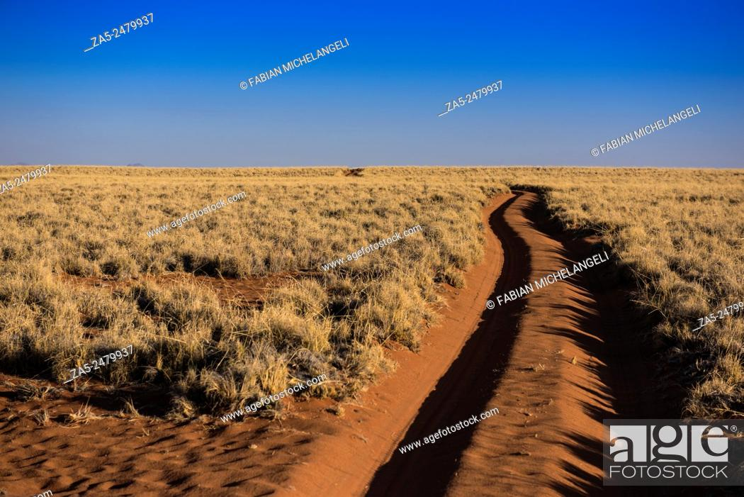 Stock Photo: The road to nowhere. Sand trail in the Namib Rand Nature Reserve. Namib Desert, Namibia.