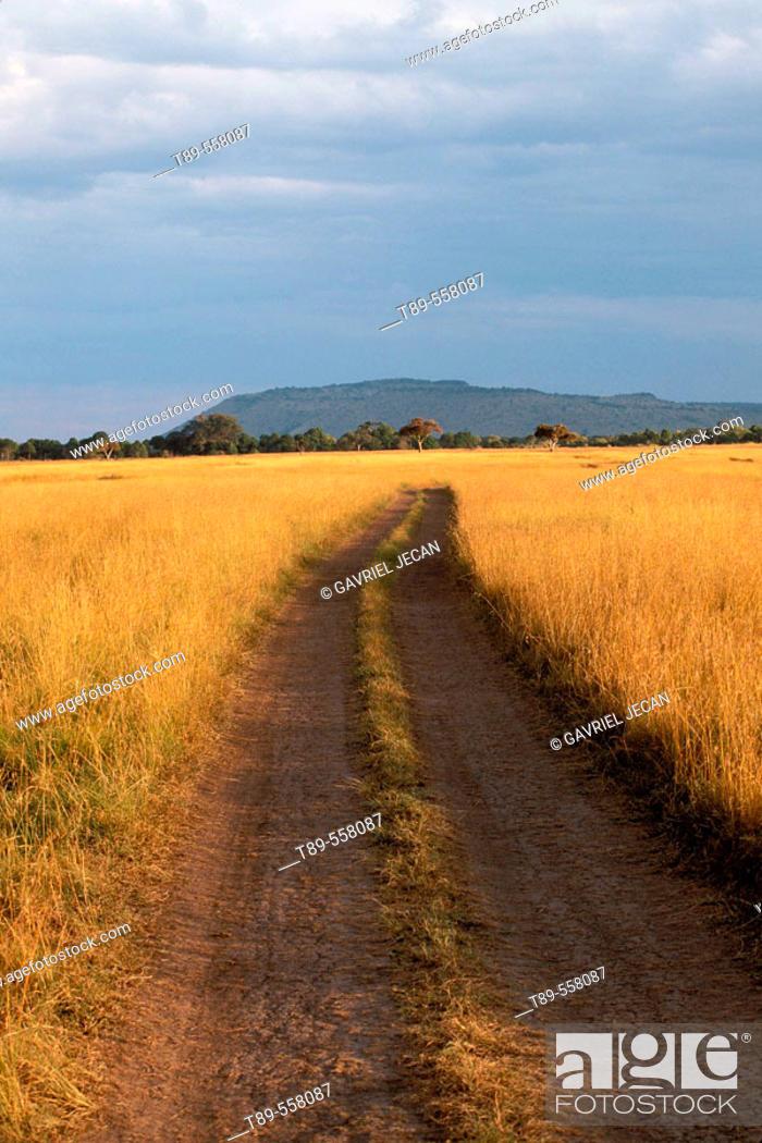 Stock Photo: Africa, Kenya, Masai Mara , Road in the Savanna.