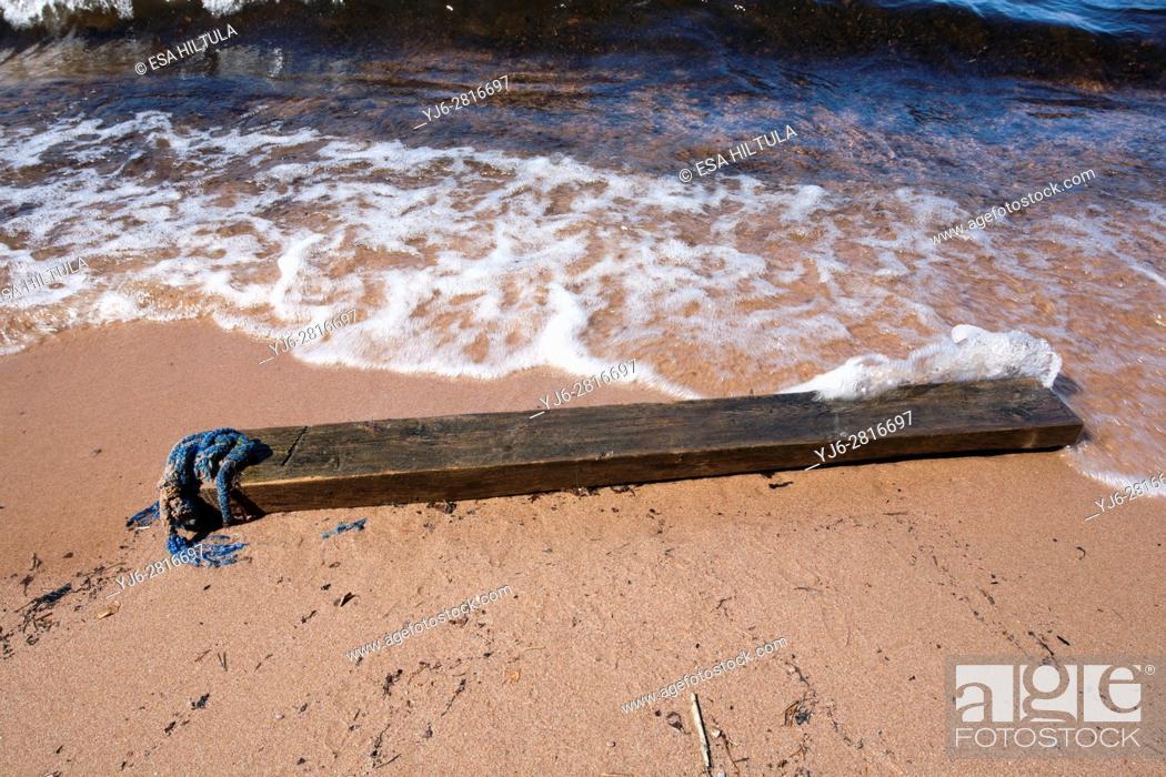 Stock Photo: shoreline with stranded log.
