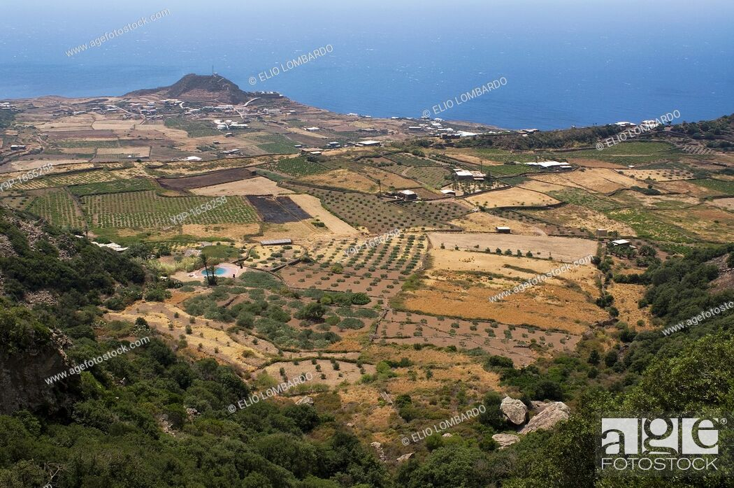 Stock Photo: Monastero Valley, Pantelleria Island, Trapani, Sicily, Italy.