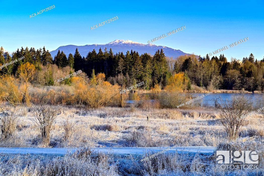 Stock Photo: Central Valley, Deer Lake Park, Burnaby, British Columbia, Canada.