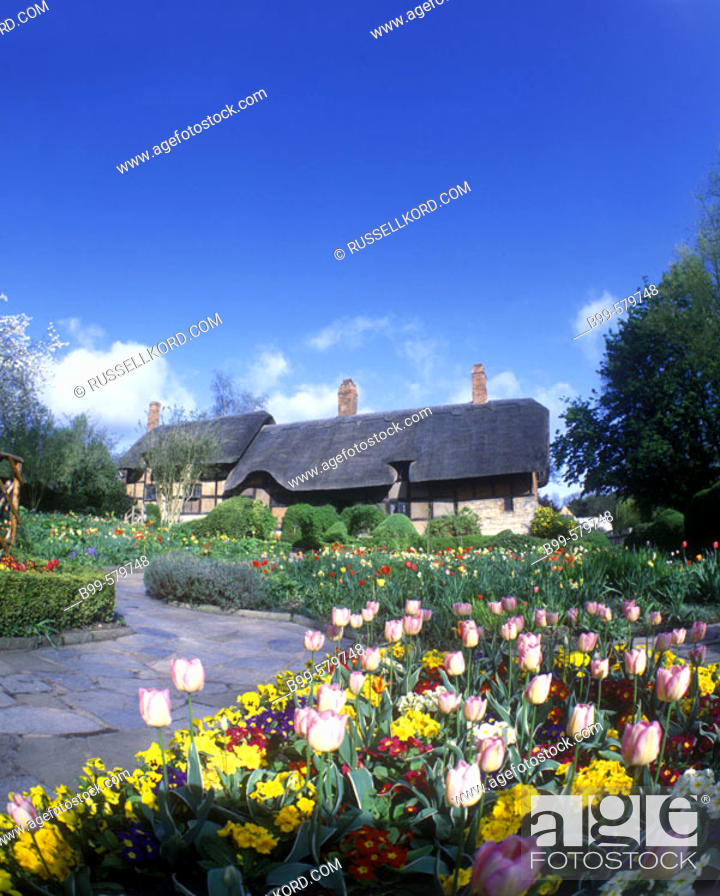 Spring Flowers Anne Hathaways Cottage Stratfordupon Avon England
