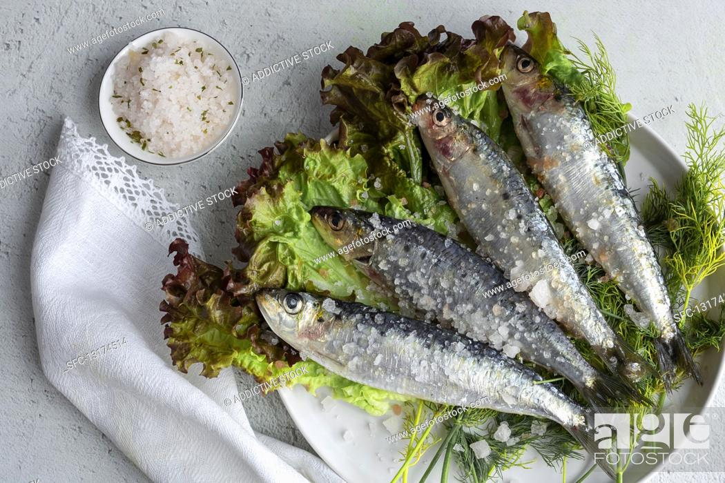 Stock Photo: Prepared savory mackerel served on salad with pieces of sea salt on plate.